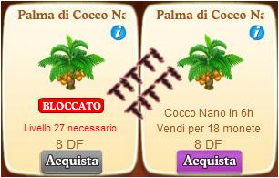 Palma di cocco nano missioni e aiuti fattoria felice - Palma di cocco ...